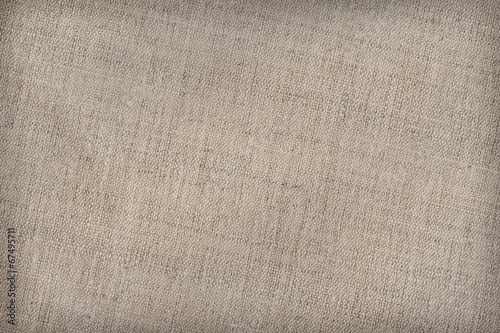 Artist's Cotton Duck Canvas Coarse Texture Sample