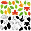 Vector Collection of Green, Autumn, Silhouettes and Outline Leav