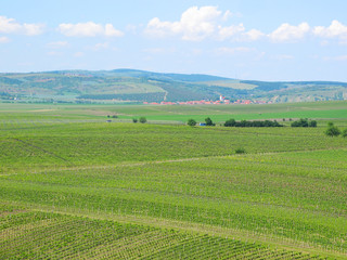 Vineyards and fields in South Moravia, Czech republic.