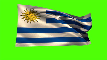 Uruguay national flag blowing in the breeze
