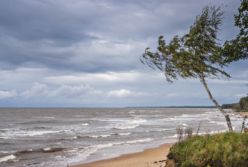 Autumnal storm at the Baltic Sea, Vidzeme, Latvia