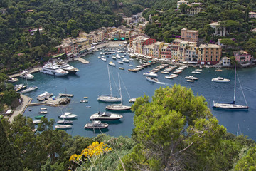 Harbor Portofino