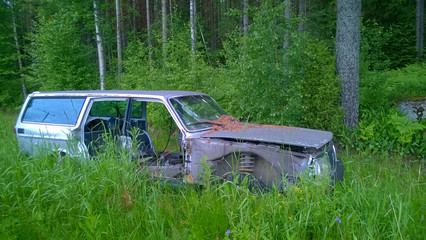 Old derelict car lost in the woods.