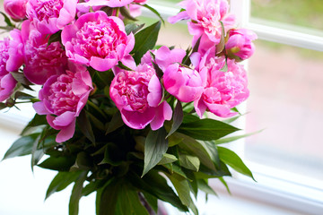 pink peonies on window-sill