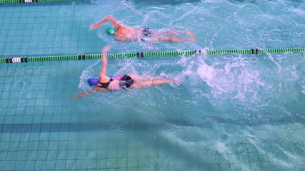 Fit swimmers racing in the pool