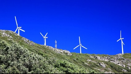wind turbines (wind power plant), clean energy.
