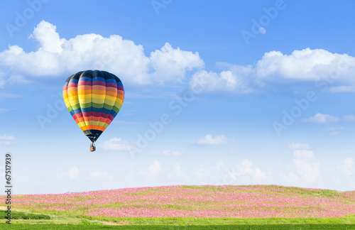 Papiers peints Montgolfière / Dirigeable Hot air balloon over pink cosmos fields with blue sky background