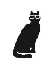 Nerd Geek Hornbrille Hipster Katze