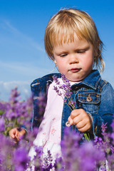 Little girl in lavender field