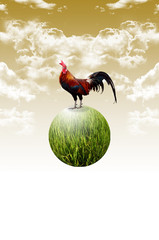 Chicken on the planet float in the air