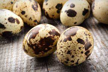 quail eggs on a fabric background
