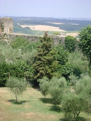 Monteriggioni - Campagna toscana