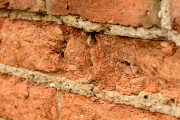 Decaying brick wall
