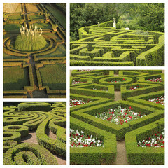 ornamental green garden collage