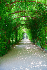 footpath in Schonbrunn Palace Park