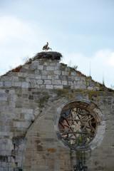 nido con cigüeñas en una iglesia en ruinas