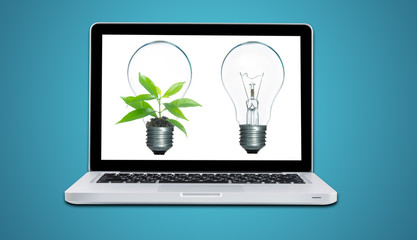 Computer laptop and plant growing inside light bulb isolate