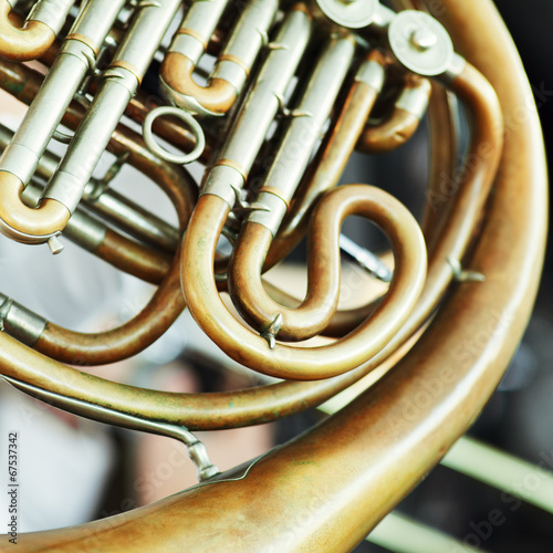 obraz PCV French Horn