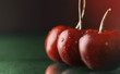 sweet cherries on table with water drops macro background