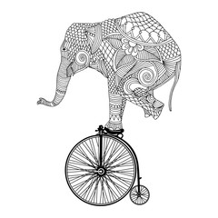 Elephant on vintage bicycle