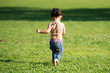Happy little toddler girl walking on the green grass