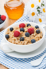 oat porridge with berries, vertical