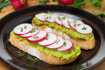 toasted ciabatta with pate of avocado and fresh radish on plate
