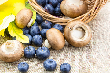 Blueberries and mushrooms in basket on linen cloth