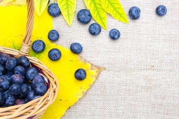 Fresh ripe blueberries in wicker basket on sack cloth