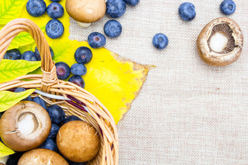 Blueberries and mushrooms in wicker basket on sack cloth