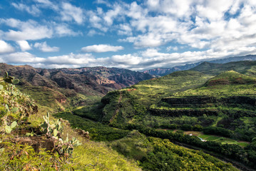 Waimea, the Grand Canyon of the Pacific