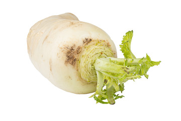 Daikon radish on white background