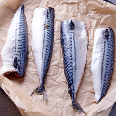 Mackerel uncoocked fillet
