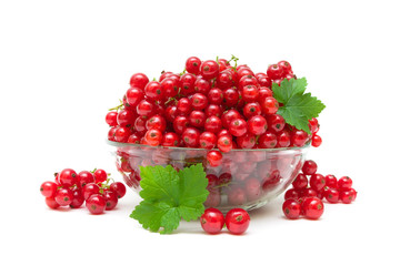 ripe juicy red currants on a white background