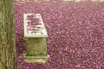 Park Bench Full of Flowers
