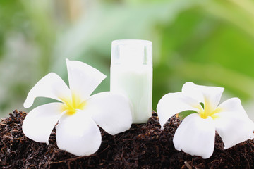 White frangipani and perfume bottle on ground.