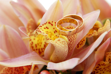 Two wedding ring on the flower