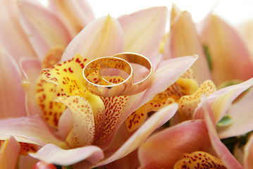 Two wedding rings on the flower