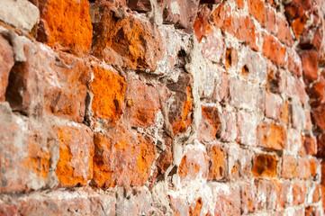 Old orange bricks, texture