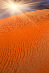 red sands in desert