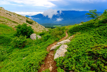 Pathway in Crimean mountains