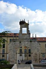 nido con cigüeñas en la torre de una iglesia