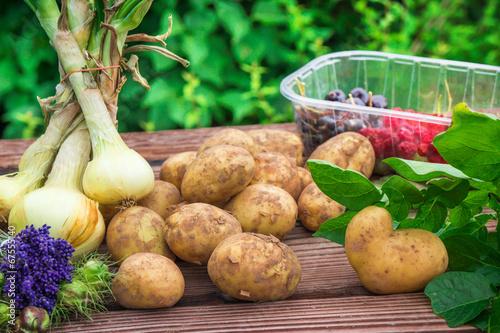 canvas print picture Obst und Gemüse der Saison