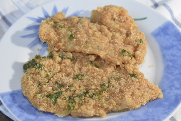 fish cutlet