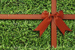 red bow on  fresh green grass background - 67556959