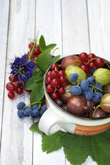 Still life with  blueberries, currants and gooseberries