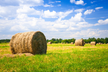 landscape with harvested bales