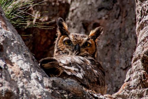 Aluminium Uil Great Howned Owl