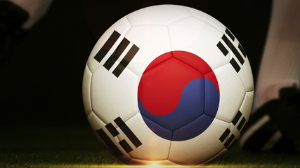 Football player kicking korea republic flag ball