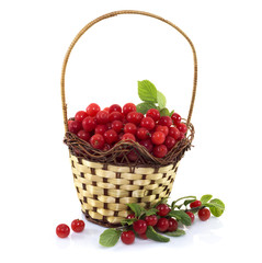 basket with cherry